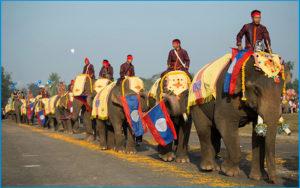 Фестиваль слонов в Сайнябули