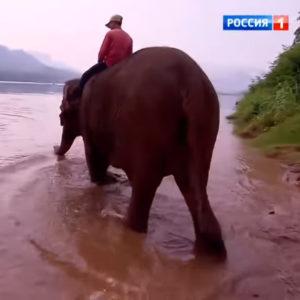 Россия 24. Лаос.