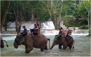 Водопад Тад Сэ, Луанг Прабанг